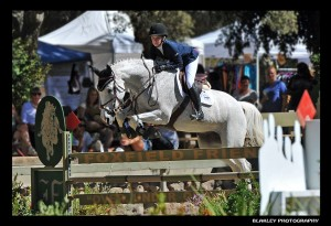 Scott Lico Stables Grey Horse Jumping
