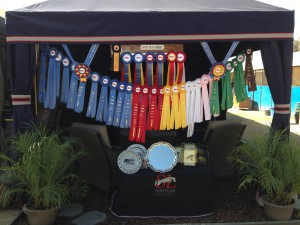 Scott Lico Stables Show Ribbons
